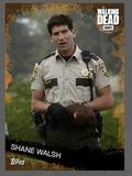 Shane Walsh