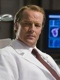 M. Doctor Stevens